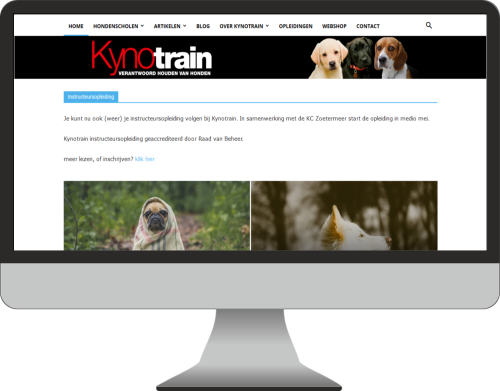 kynotrain website